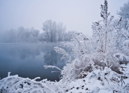 WALKING IN WINTER WEATHER: ADVICE FROM BRITISH CHIROPRACTIC ASSOCIATION